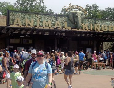 fastpass disney orlando animal kingdow